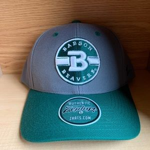 Babson Beavers University Zephyr College Hat Cap